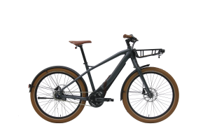 STURMVOGEL EVO STREET is one of our fastest electric bikes!