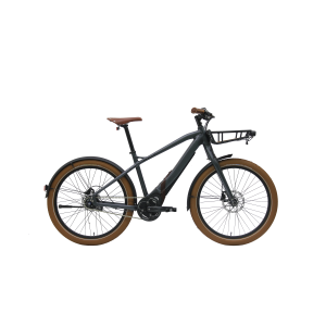 STURMVOGEL EVO STREET is one of our fastest electric bikes!